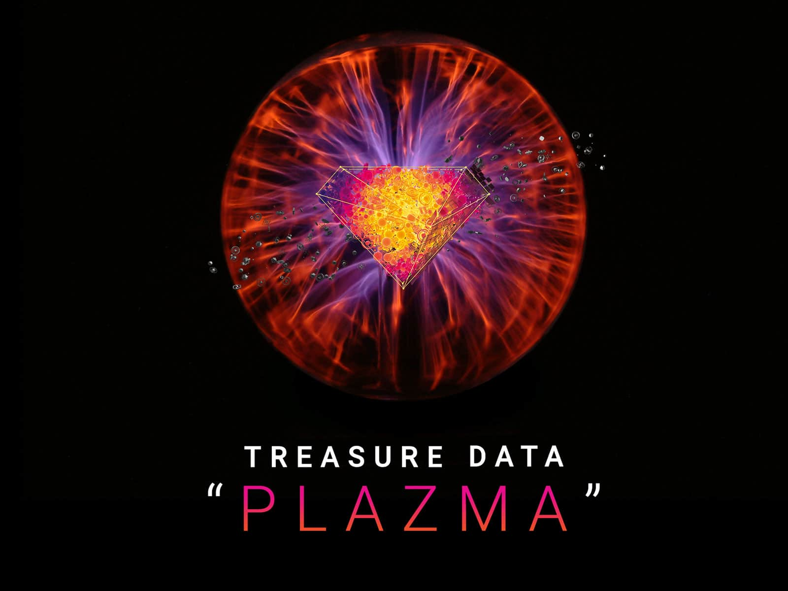 treasure data plazma 基調講演に デジタルマーケティングの先駆者